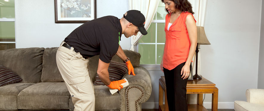Hudson, WI carpet upholstery cleaning